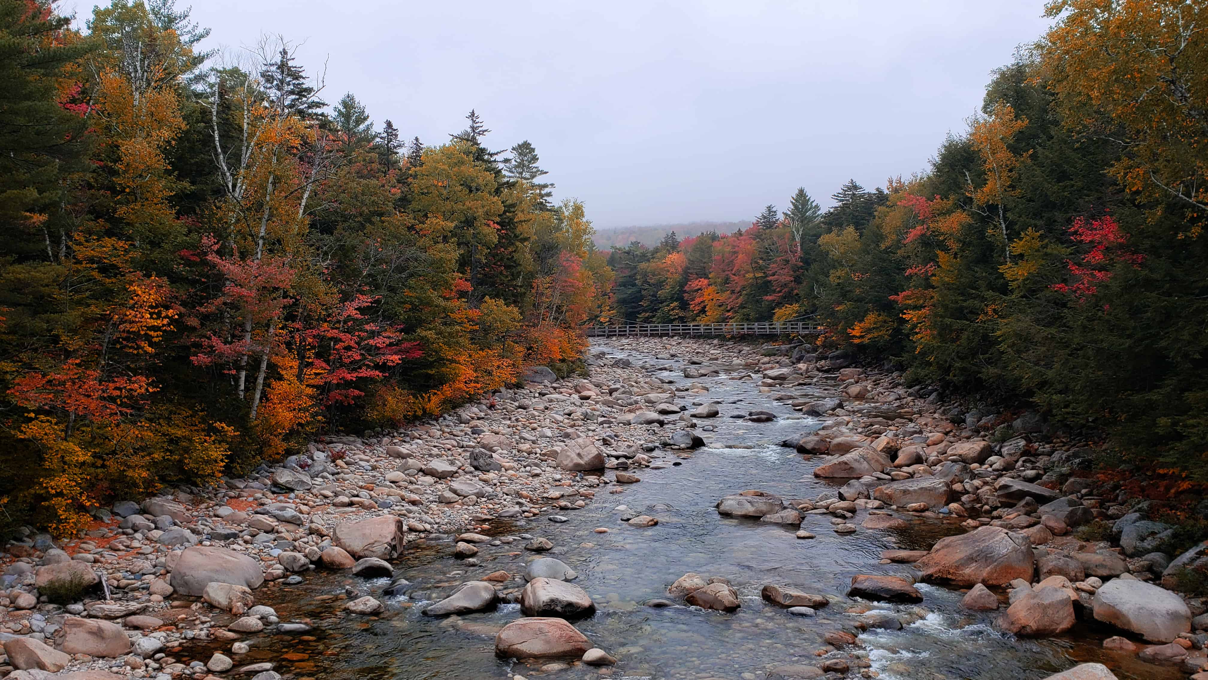 things to do in north conway nh - image of new hampshire lined with late fall trees on a cloudy grey day