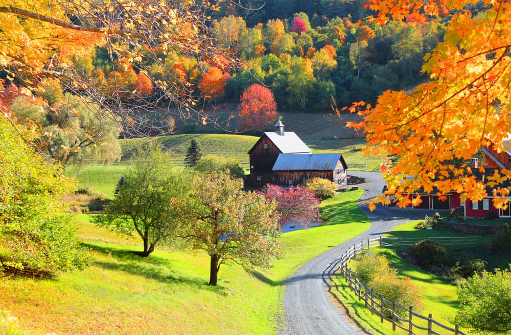 fall in new england - image of vermont farmhouse down long driveway, surrounded by colorful fall leaves