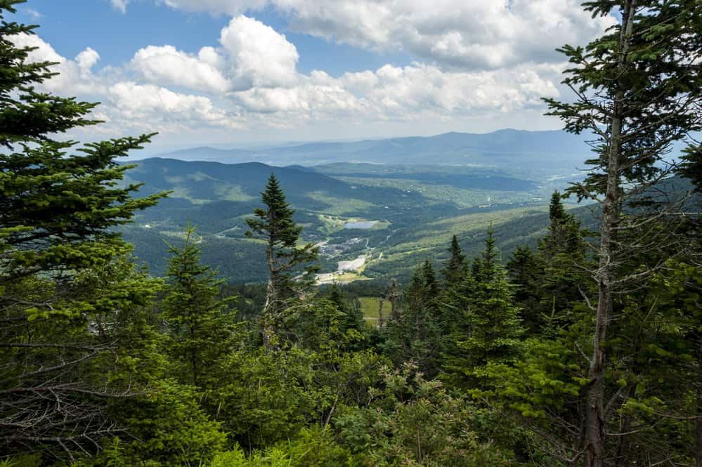 view from Top of Mount Mansfield in Vermont, green pine tree covered hills with blue/green mountains in the distance