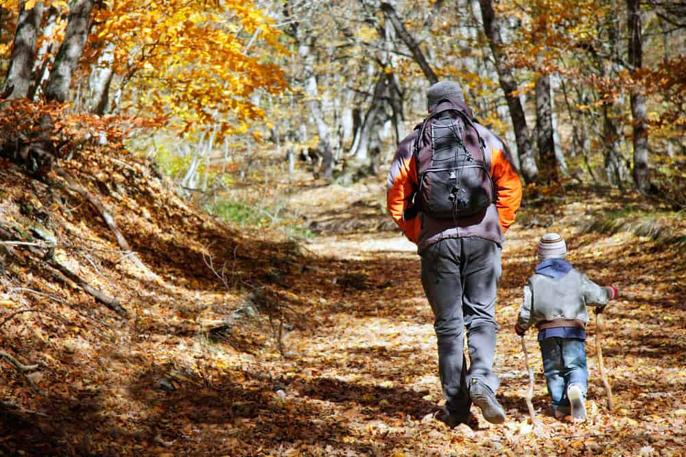 Best Hikes in Connecticut - father and son walking in autumn forest