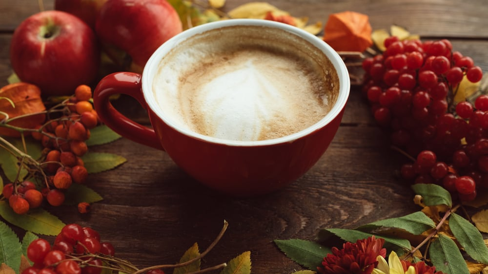 best coffee shops in northampton ma - image of latte in red mug surrounded by fall leaves, berries, and apples