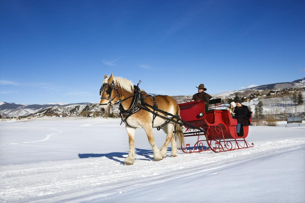 winter in vermont - Young Caucasian couple and mid adult man on horse drawn sleigh ride through winter landscape.
