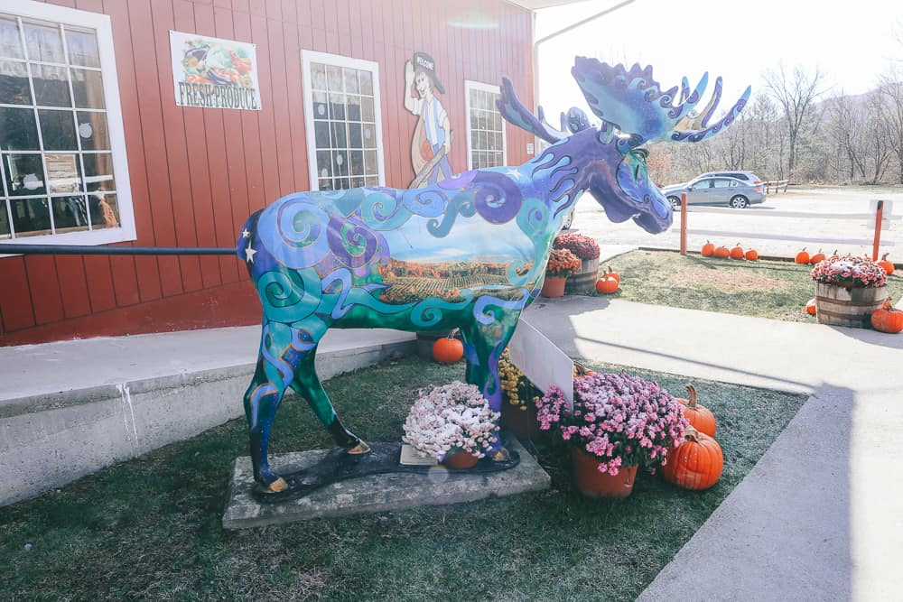 things to do in bennington VT - image of painted moose statue in Vermont
