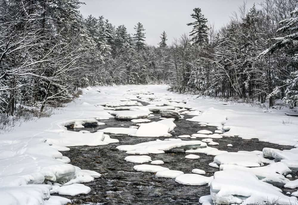 things to do in new hampshire in the winter-image of snowy river surrounded by tall pine trees