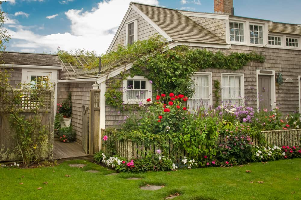 cape cod airbnb - classic new england cottage on cape cod in summer, flowers on the walls
