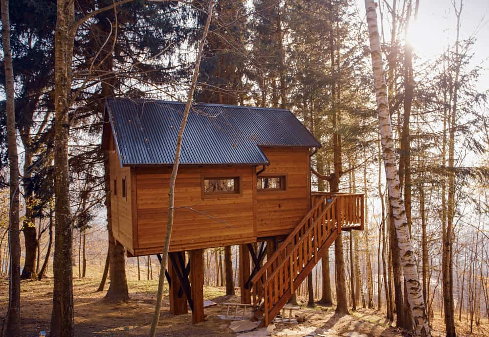 treehouse rentals in new england - image of brown classic treehouse in the sunlit woods, a set of stairs leads up to the treehouse