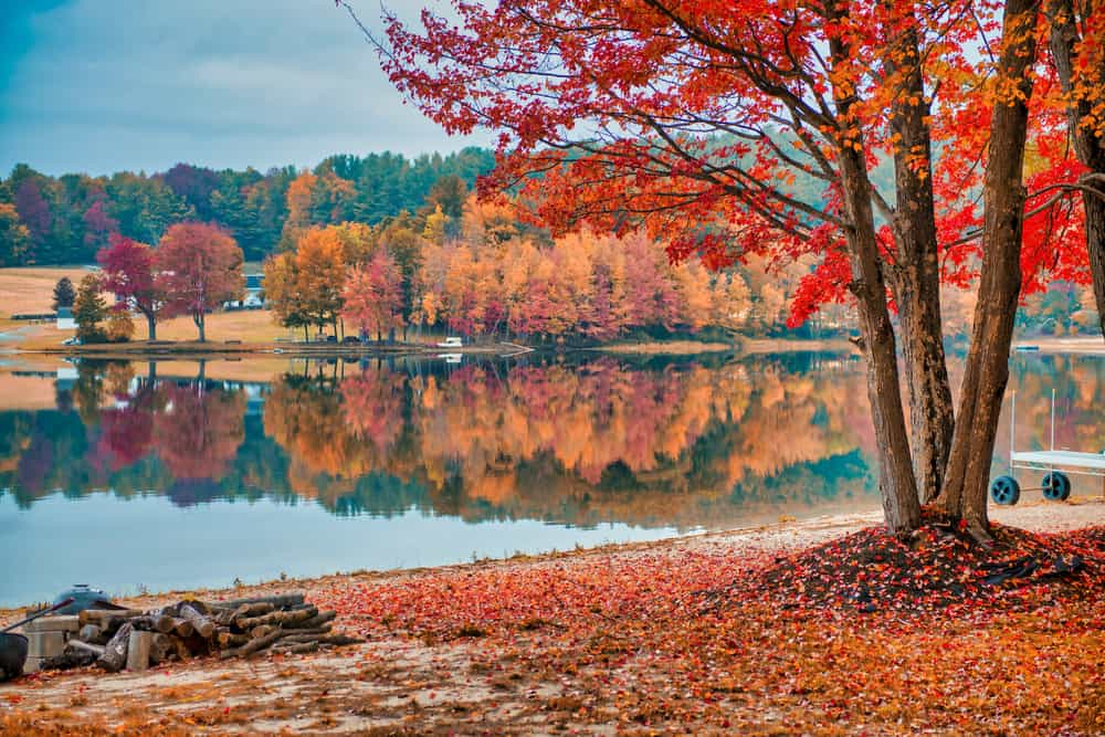 still lake surrounded by fall foliage -leaf peeping is one of the best things to do in the berkshires
