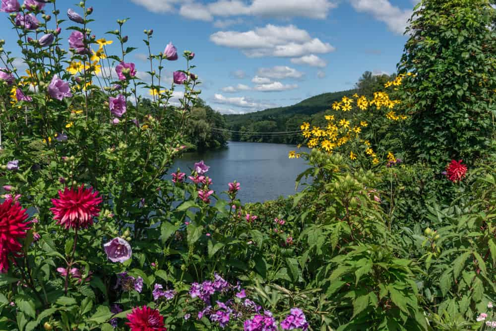 A picture flowers overlooking a lake and mountains is the Bridge of Flowers