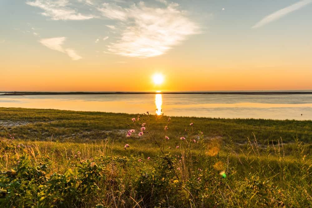 A view of sun-rise on a grassy sea-shore