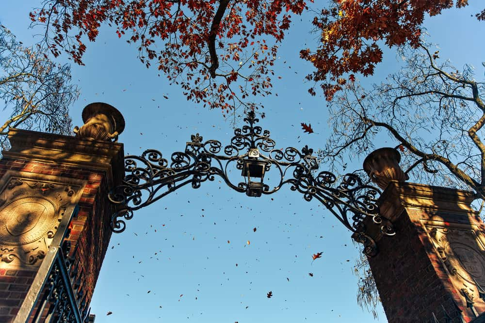 shot from below of a stone and iron gate at harvard university campus