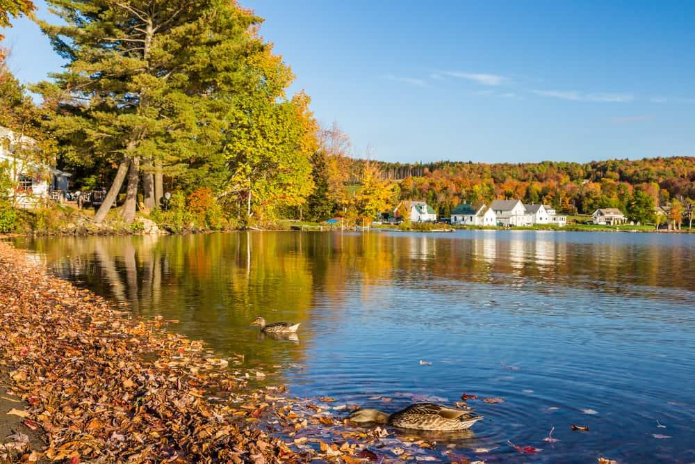 Autumn Foliage in Lake Elmore Vermont, a calm lake bordered by white houses