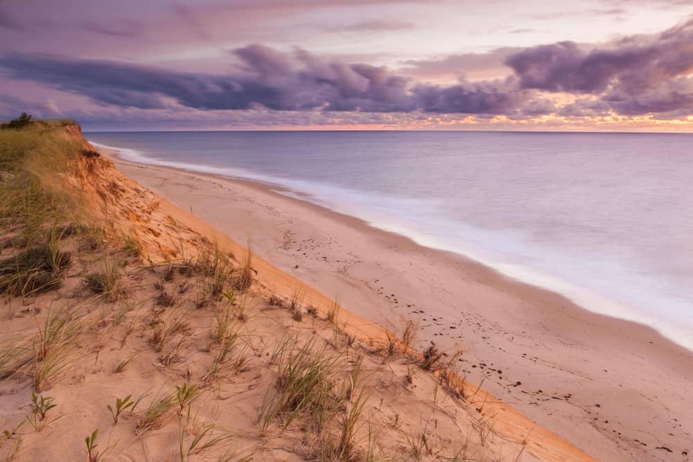 a purple sunrise seen over a calm ocean set against grassy sand dunes