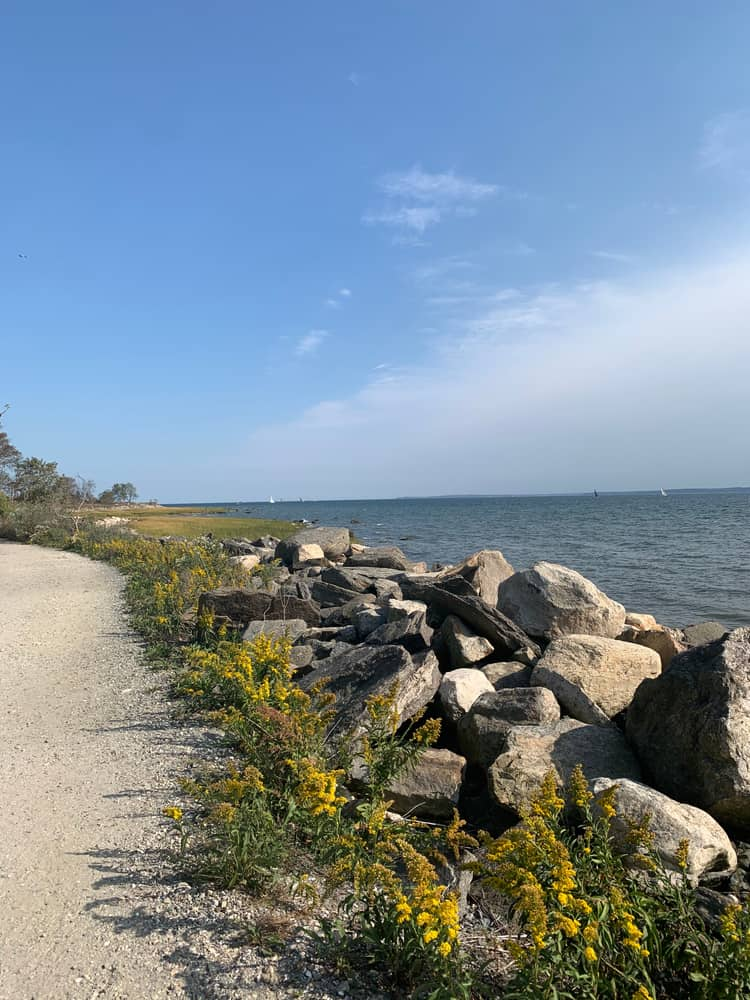 a pile of rocks, rocky shore next to a calm blue ocean
