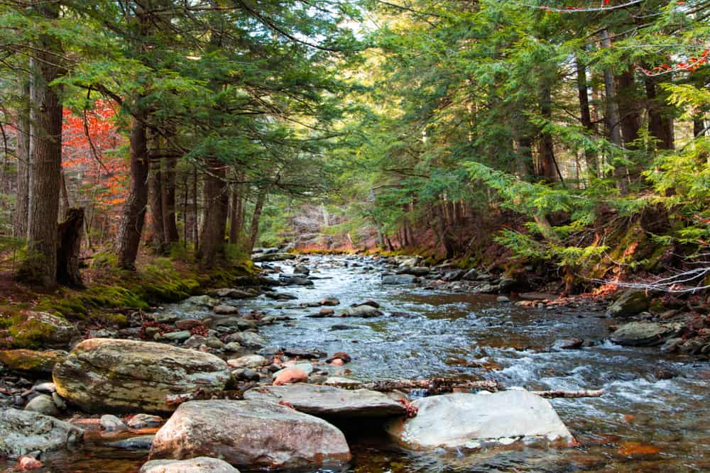View of a river at Smuggler's Notch State Park in Vermont in early fall