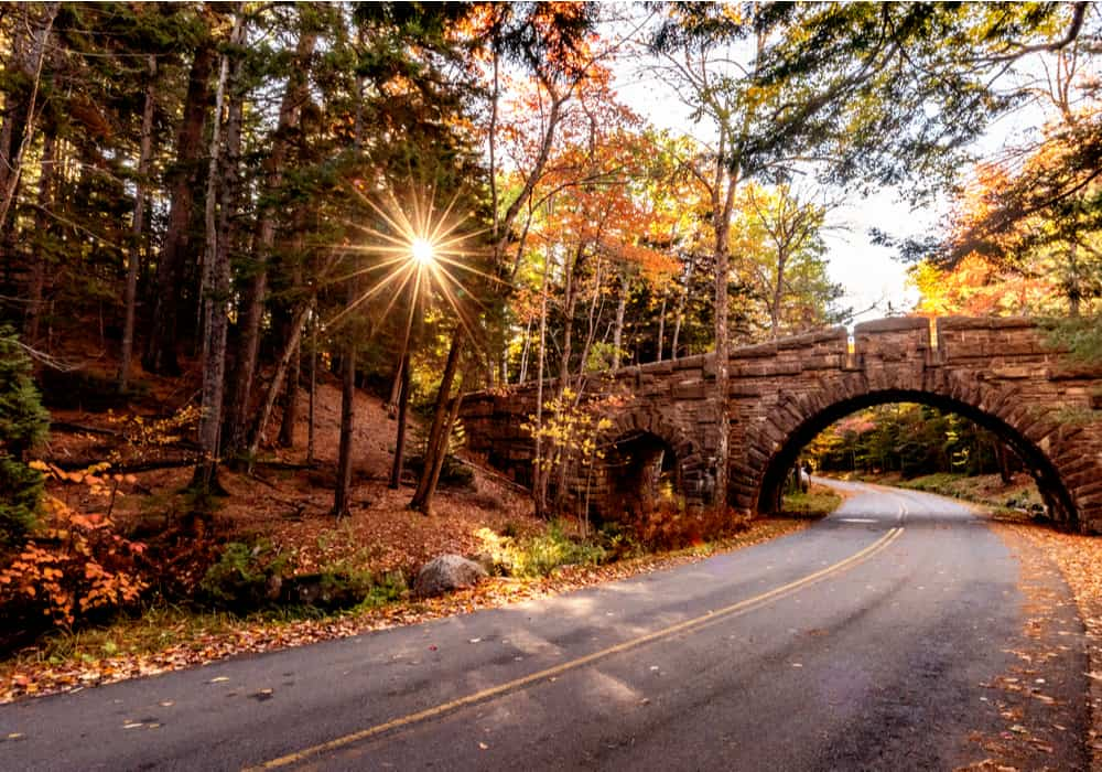 winding autumn road with sunburst coming through the trees and stone bridge crossing over the road