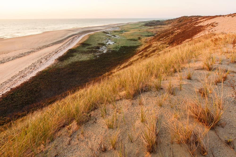 things to do in wellfleet ma - image of an orange hued beach dune with the green water beyond, sunset
