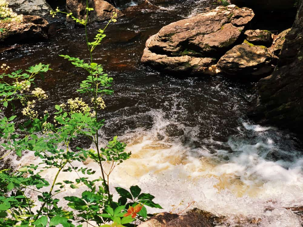 Rushing river surrounded by rocks