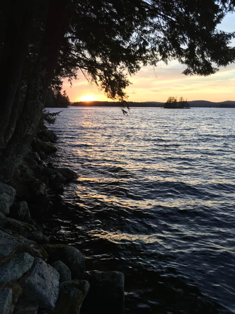 dusk at the edge of a lake, shadow of tree at left edge of photo