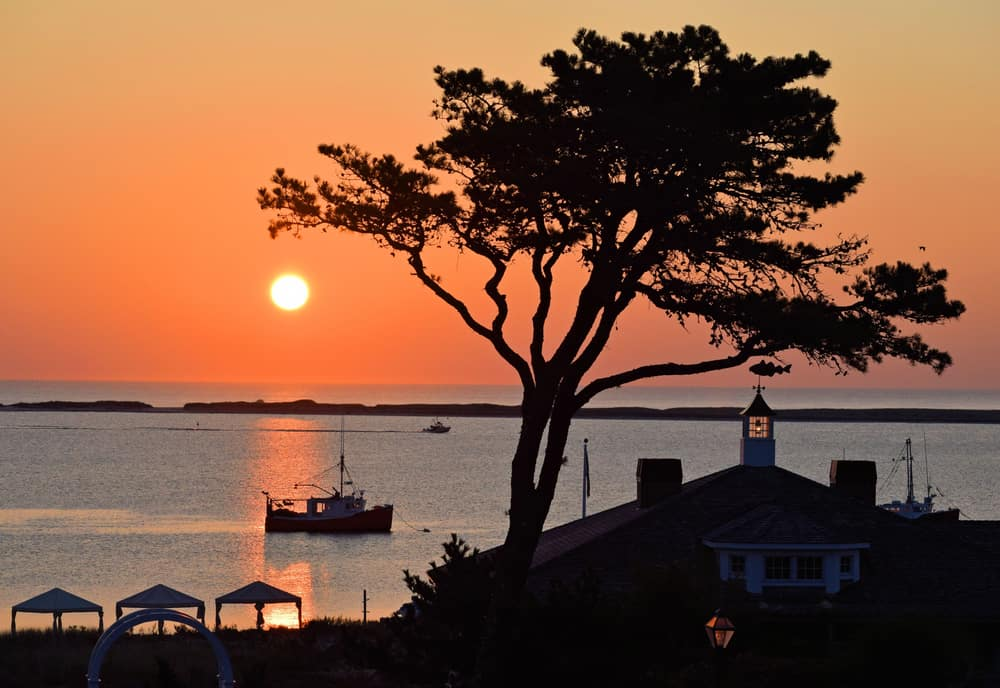 boat on the water at sunset, silhouette of tree in foreground - things to do in chatham ma