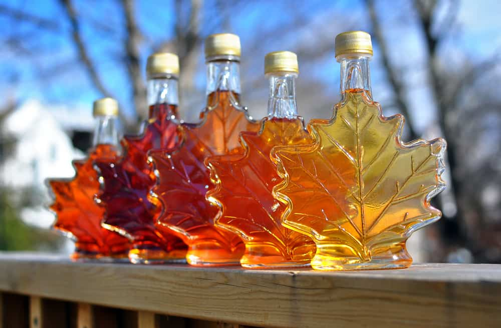Five glasses of maple syrup in various leaf shaped bottles.