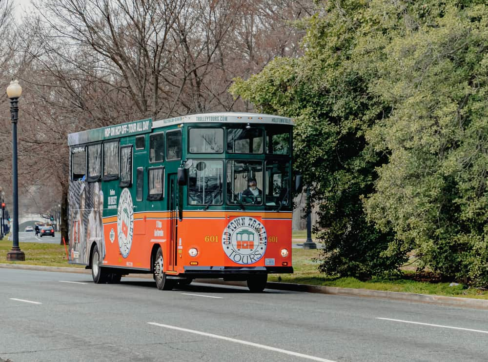 Green and orange trolley driving on the road by a big tree