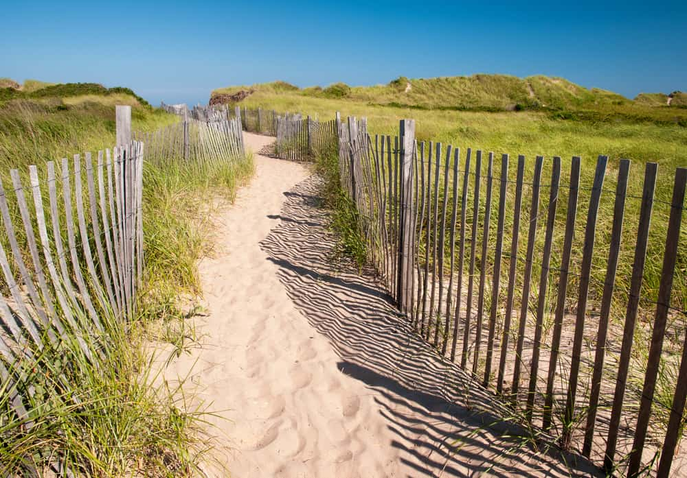 a sandy path leading to the beach between flimsy wooden fencing