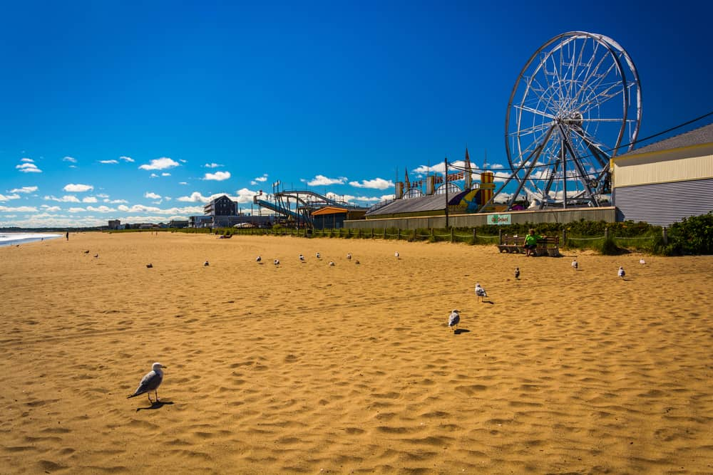 sandy beach with rides in the background