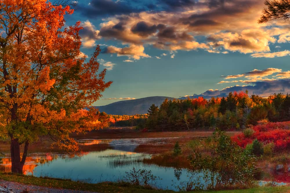 stunning autumn scene, a calm lake surrounded by fall foliage and a distant mountain