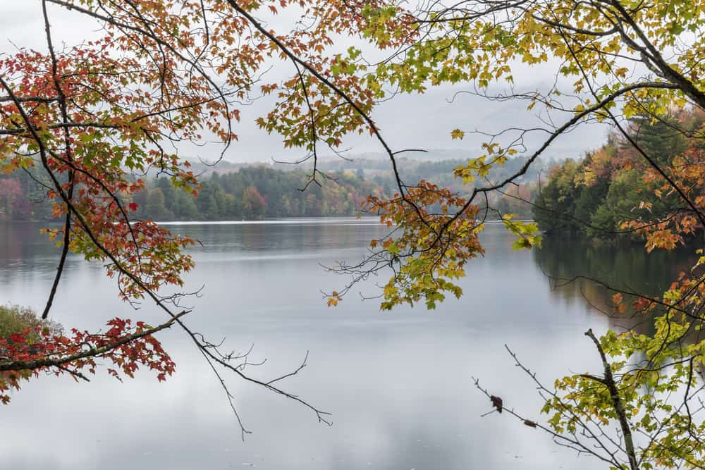 A calm foggy Autumn morning on the Waterbury Reservoir in Waterbury, Vermont.
