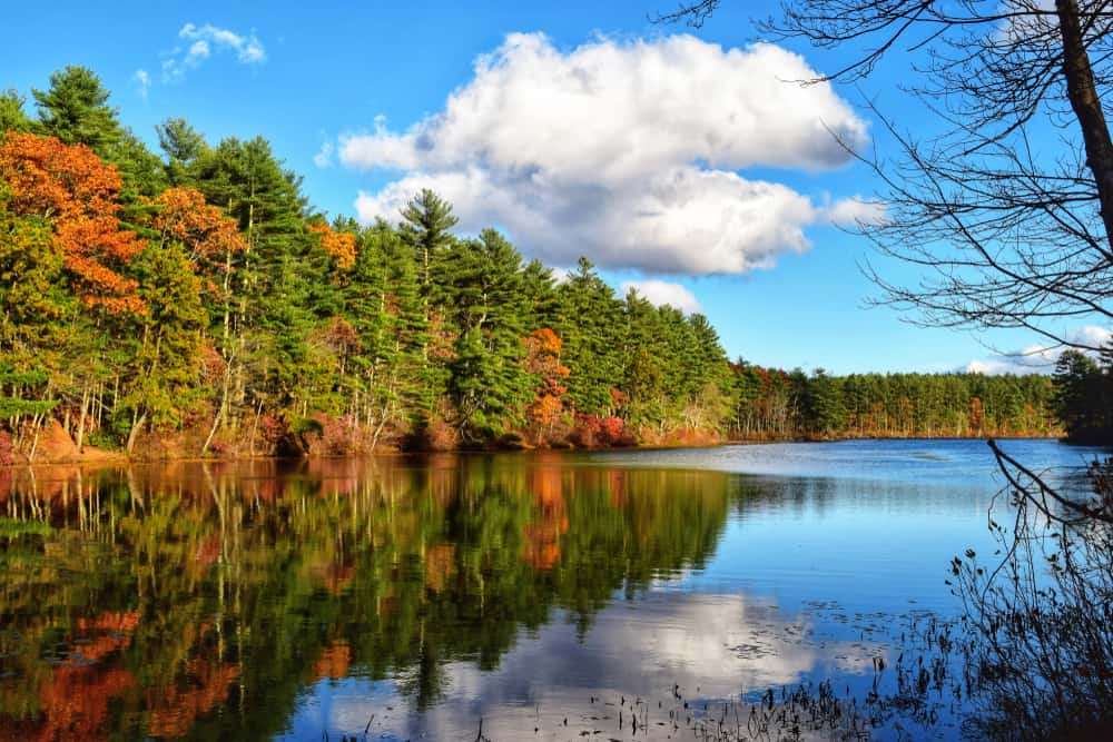 Tranquil lake on a sunny day surrounded by fall foliage, a beautiful lakes in Rhode Island.