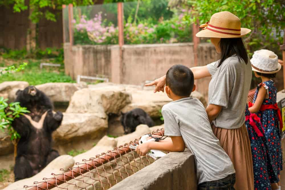 Mom and two children looking into an exhibit, best zoos in new england