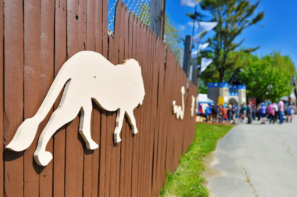 Brown fence with white animal cut outs
