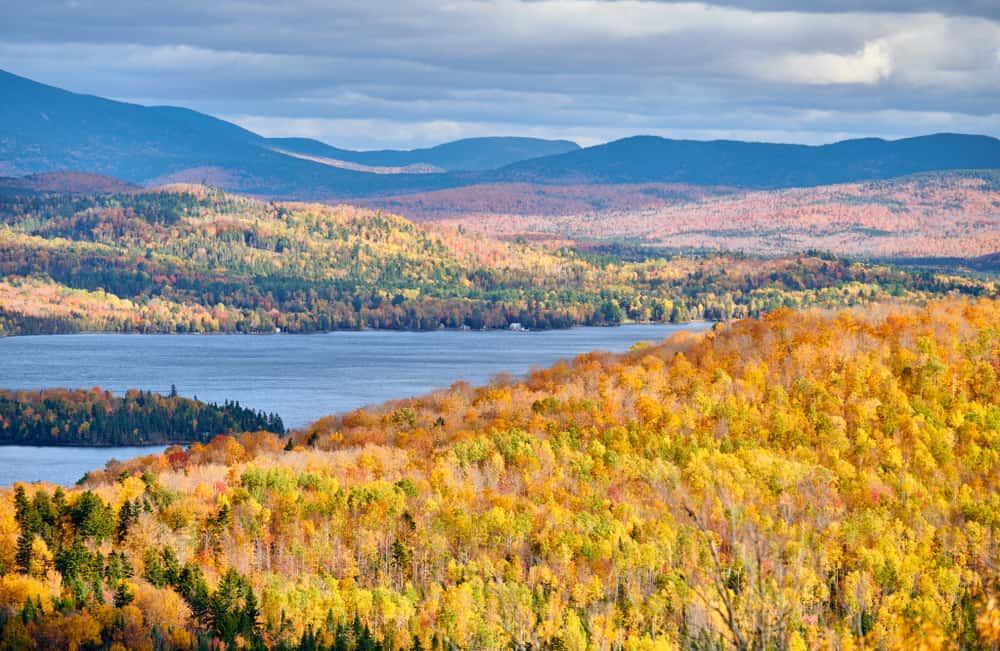 Lake with beautiful yellow fall foliage, one of the best lakes in Maine.