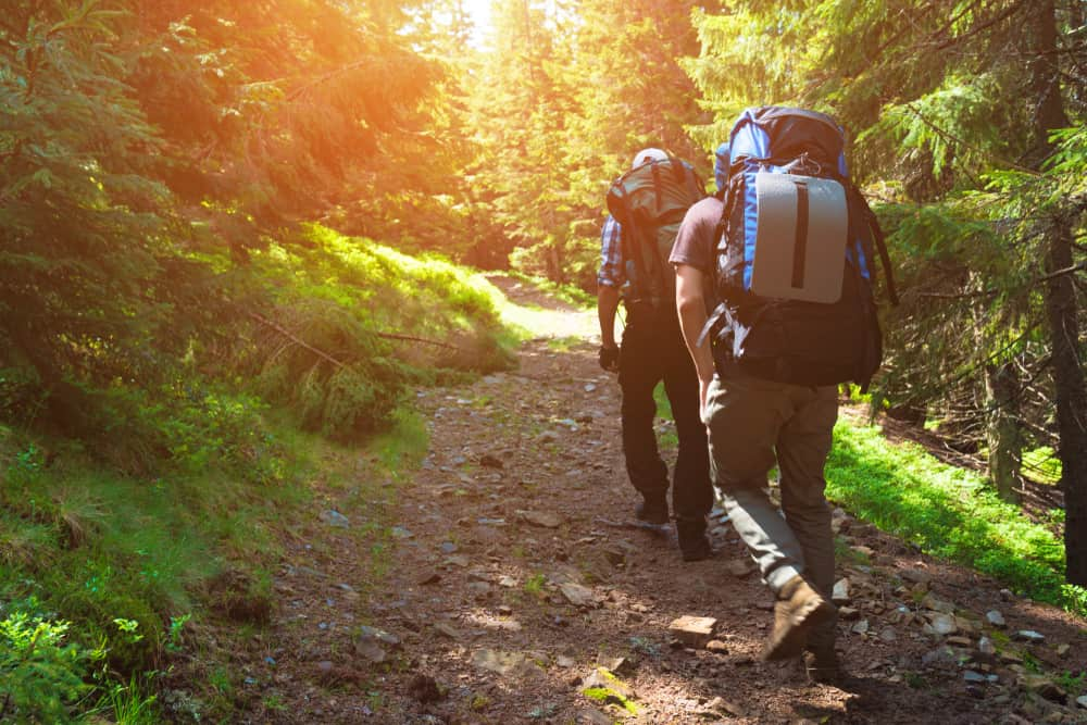Two people hiking in the forest with the sun peaking through the trees