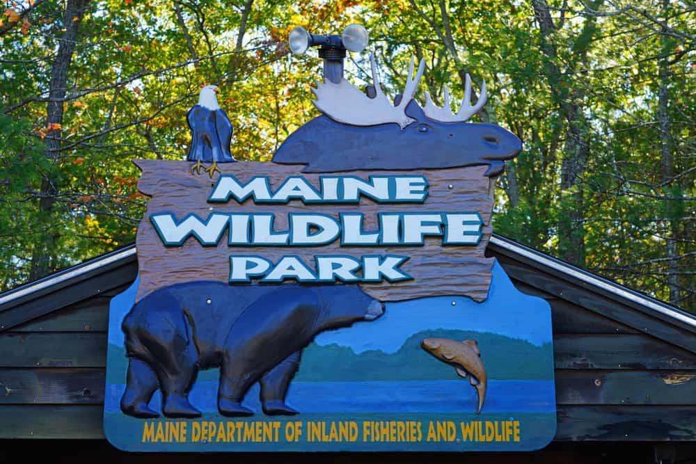 Sign that says Maine Wildlife Park