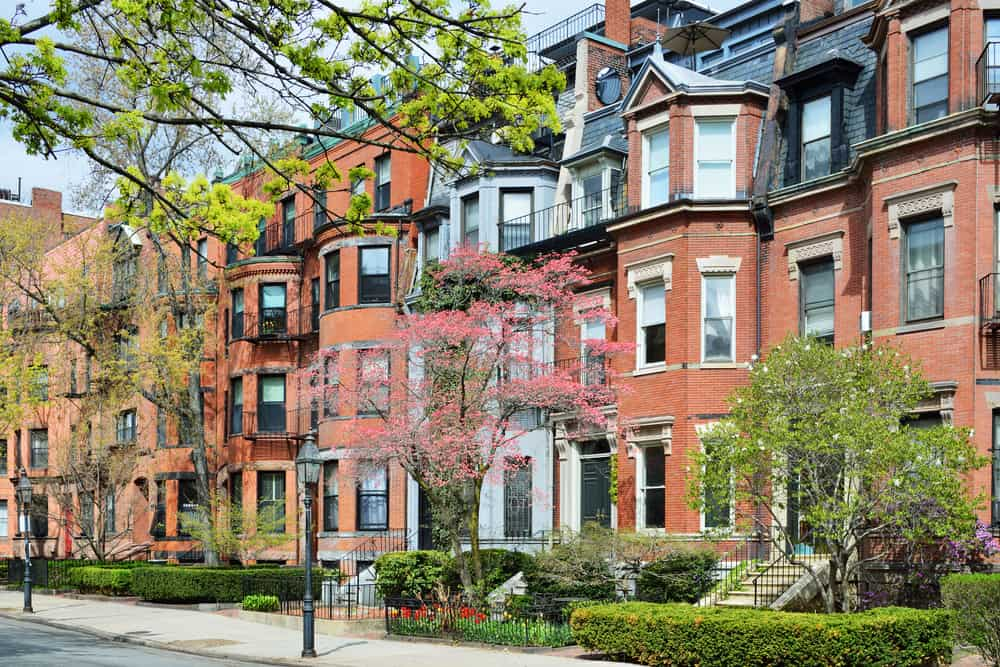 Historic brownstones in the spring with green trees
