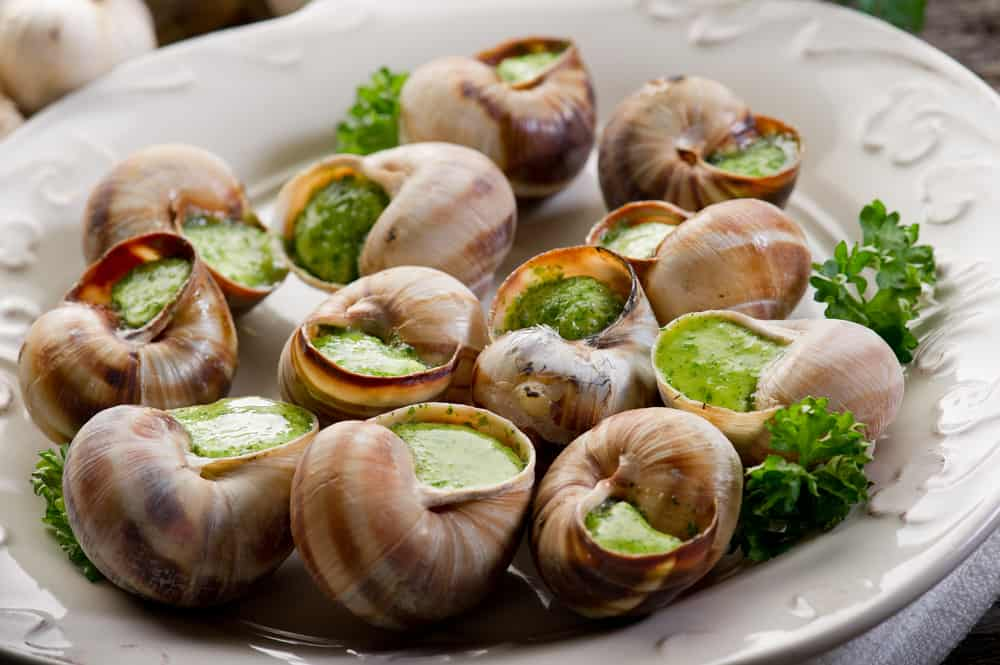 Plate filled with escargot