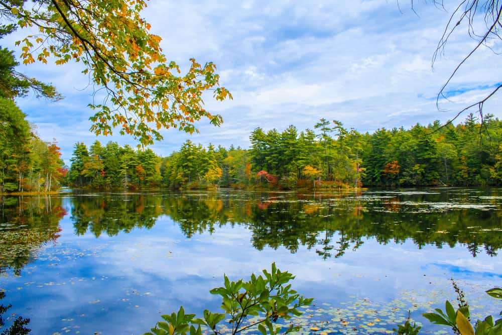 Reflective lake with blue skies during the fall. One of the best lakes in Connecticut.