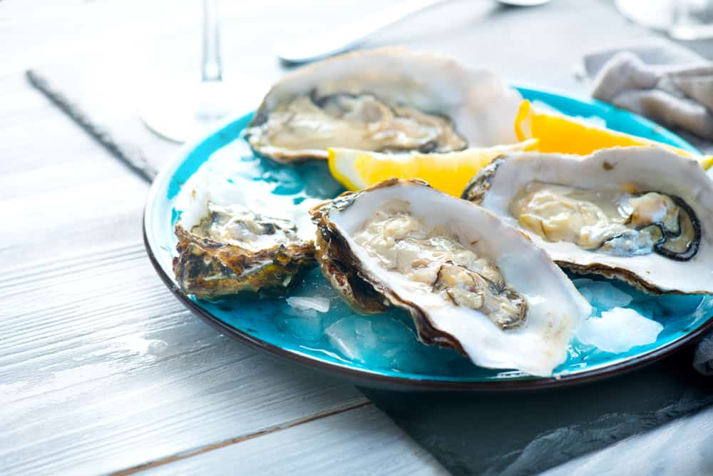 Oysters on a blue plate