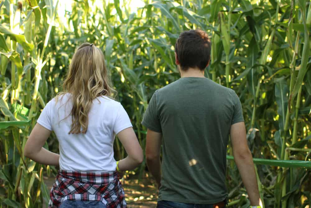 Two friends standing in a corn maze