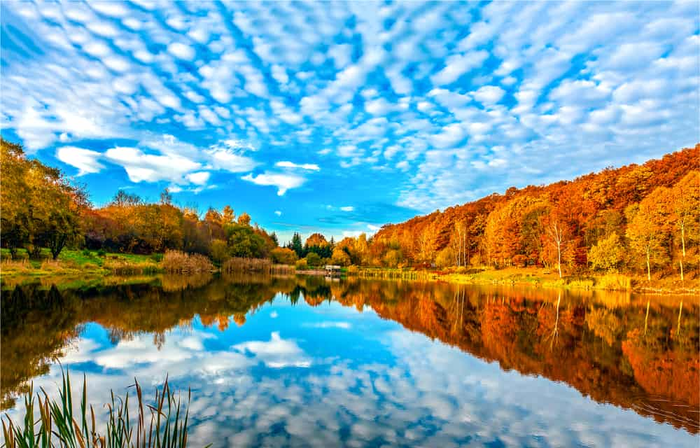 Serene lake in the fall, things to do in North Adams
