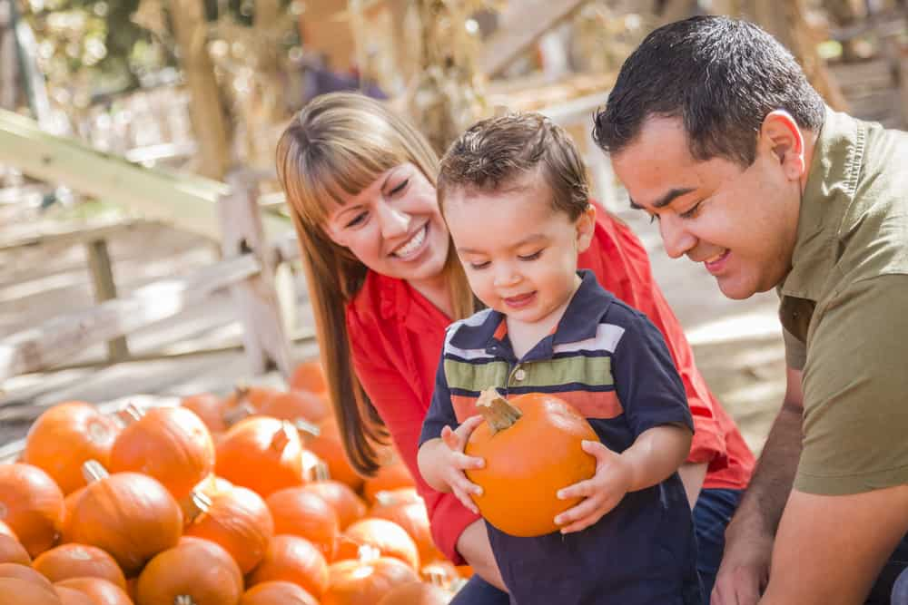 Mother, father, and son holding a pumpkin and smiling