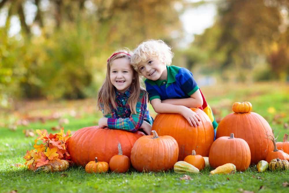 Children smiling next to huge pumpkins