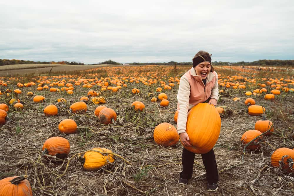 Girl trying to pick up a super heavy pumpkin in a pumpkin patch