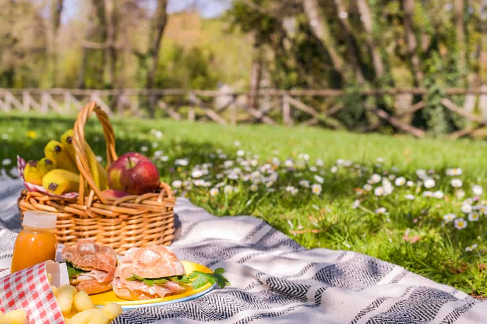 Picnic basket filled with snacks on a blanket in a park