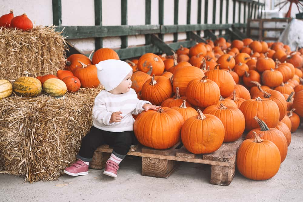 Baby sitting next to tons of pumpkins at a farm stand