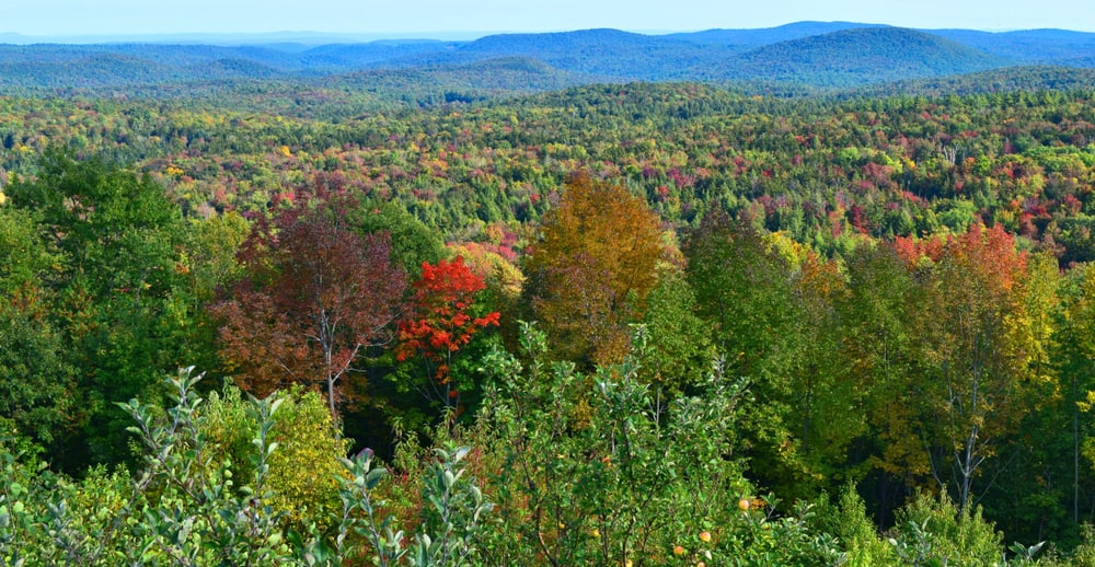 Beautiful mountain view from Hogback Mountain, things to do in Wilmington