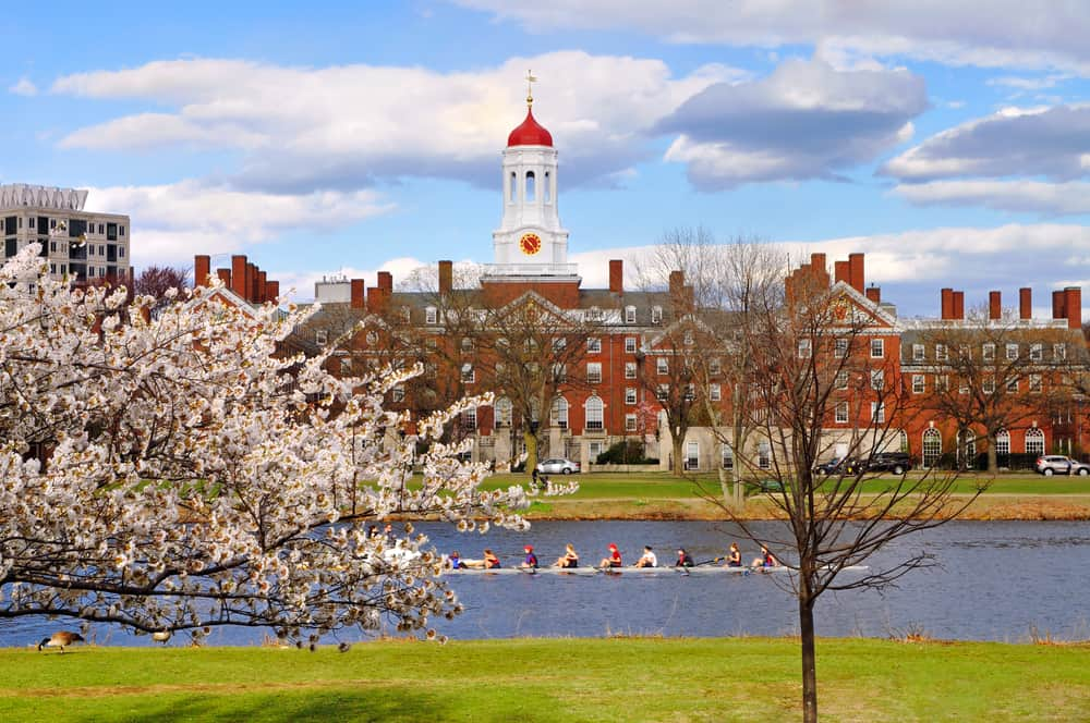 a red brick college building at harvard seen in the distance with spring flowers and crew rowers in the river