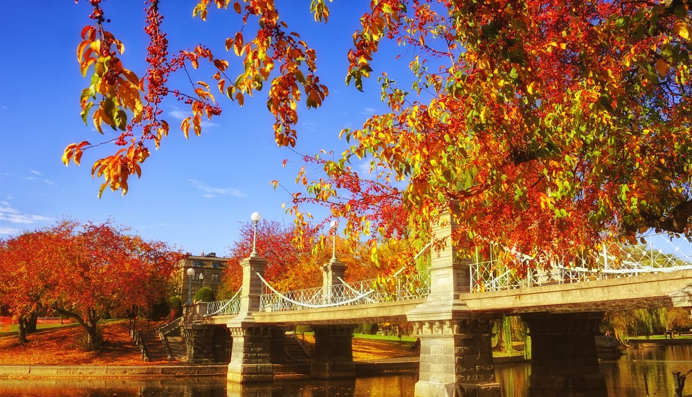 weekend in boston - an image of a bridge in boston common surrounded by autumn leaves