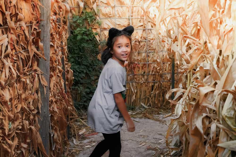 Girl with cat ears having fun in a corn maze